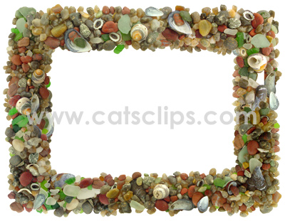 agates and shells border