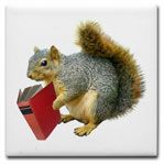 squirrel with book coaster at CafePress