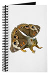 butterfly squirrel journal