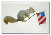 squirrel with american flag magnet