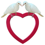 doves red heart frame