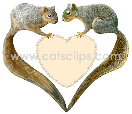 love squirrels heart border