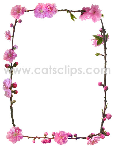 Peach Blossom border from www.catsclips.com
