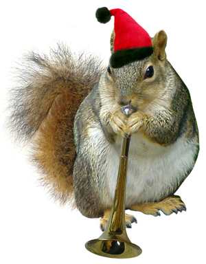 Santa squirrel with horn