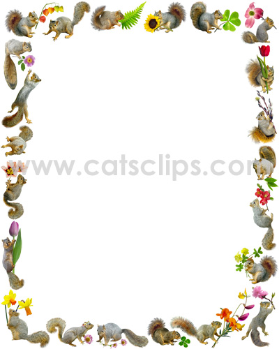 squirrels with flowers border