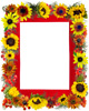photo frames at zazzle