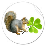 Squirrel with Shamrock sticker from Cat's Clips.